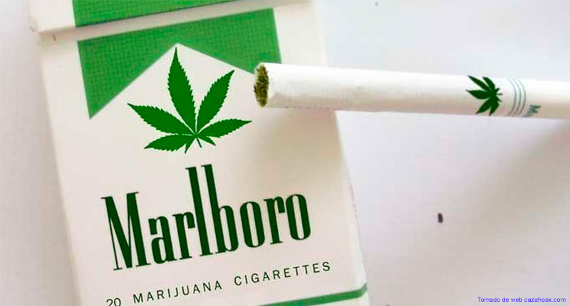 New Marijuana´s Cigarrette by Marlboro