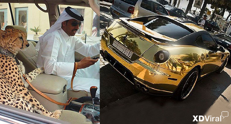 55 Amazing pictures of millionaires in Dubai
